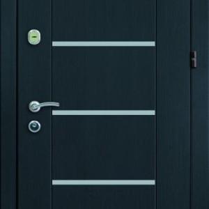 Входная дверь ПРЕМИМ БМ 1